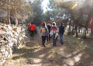 Camins d'Empúries Foto: el punt avui.